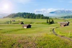 Terreno coltivabile verde di estate Fotografie Stock