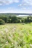 Terreno coltivabile verde selvaggio di Longford Immagini Stock