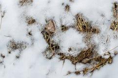 Terreno coperto di neve fotografie stock
