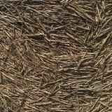 Terreno coperto in paglia - fondo Fotografie Stock