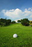 Terreno da golf Immagine Stock