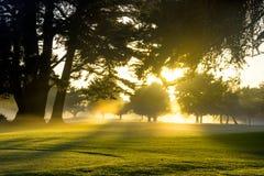 Terreno da golf all'alba immagine stock