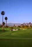 Terreno da golf con le palme Immagine Stock Libera da Diritti