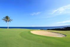 Terreno da golf dei campioni, Hawai Fotografia Stock