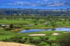 Terreno da golf della raccolta Fotografie Stock