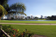 Terreno da golf di Miami fotografia stock