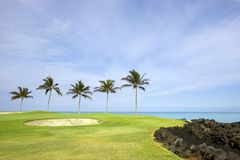 Terreno da golf, Hawai Fotografia Stock Libera da Diritti