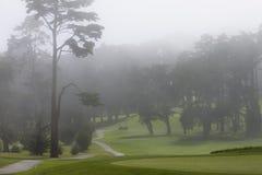 Terreno da golf nebbioso Fotografie Stock Libere da Diritti