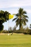 Terreno da golf tropicale Fotografia Stock Libera da Diritti