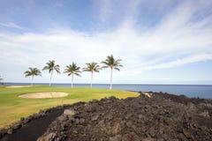 Terreno da golf in tropici Fotografie Stock Libere da Diritti