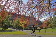 Terreno da Universidade de Cornell em Ithaca Fotografia de Stock