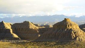 Terreno della foresta nel Tibet Immagini Stock Libere da Diritti