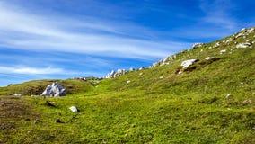 Terreno della montagna rocciosa Immagine Stock