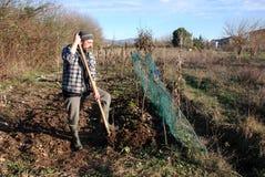 Terreno di giro del coltivatore in inverno immagine stock libera da diritti