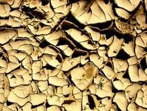 Terreno di secchezza Fotografie Stock