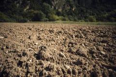 Terreno fertile fotografia stock