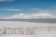 Terreno incolto della neve fotografie stock