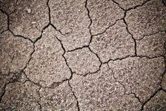 Terreno incrinato Chiuso-in su immagine stock