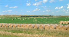 Terreno irregolare del Sud Dakota con le balle di fieno Immagini Stock