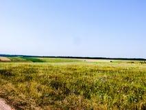 Terreno montanhoso do verão imagem de stock royalty free