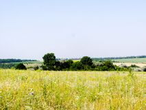 Terreno montanhoso do verão foto de stock