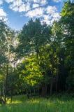 Terreno montanhoso pitoresco sem tocar na grande proximidade de áreas urbanas modernas foto de stock