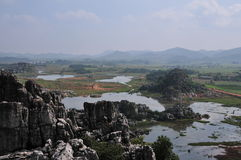 Terreno paludoso di Haifeng immagine stock