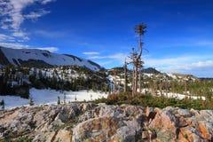 Terreno roccioso del Wyoming Fotografia Stock Libera da Diritti