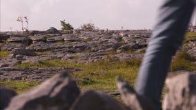 Terreno roccioso ed erboso in Irlanda stock footage