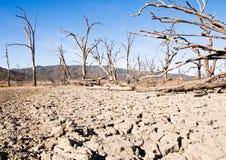 Terreno seco Foto de archivo