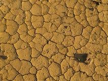 Terreno seco Foto de Stock
