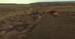 Terreno variopinto con le grandi e piccole colline Volo sul fuco sopra le belle colline di autunno stock footage