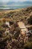 Terreno vulcânico Fotografia de Stock