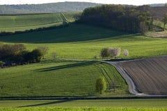 Terres arables en Basse Autriche, Weinviertel images stock