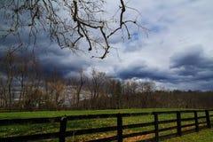 Terres cultivables énormes de Hudson Valley NY d'arbre de sycomore Image libre de droits