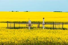 Terres cultivables agricoles de canola de têtes de puits de gaz naturel photos stock