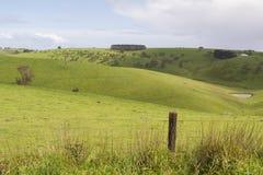 Terres cultivables aléatoires dans la péninsule de Fleurieu, Australie du sud Photographie stock libre de droits