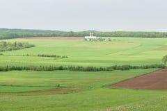 Terres cultivables au printemps Photos libres de droits