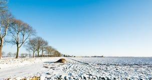 Terres cultivables couvertes de couche de neige Photos stock