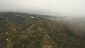 Terres cultivables dans les montagnes en brouillard et nuages Bali, Indonésie banque de vidéos