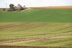 Terres cultivables de cap de Tableau Image libre de droits