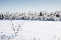Terres cultivables de glace et de neige Photographie stock