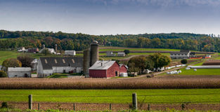 Terres cultivables de la Pennsylvanie Photo libre de droits