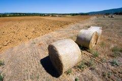 Terres cultivables de la Toscane en Italie Photographie stock libre de droits