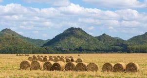 Terres cultivables de paille de petit pain Photographie stock libre de droits