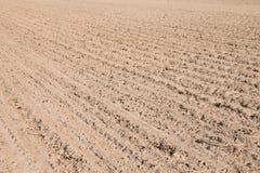 Terres cultivables de ressort Image stock