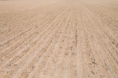 Terres cultivables de ressort Photographie stock
