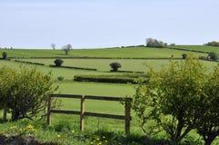 Terres cultivables de Yorkshire Photographie stock libre de droits