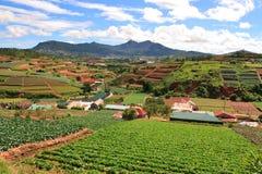 Terres cultivables du Vietnam Image stock
