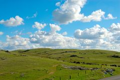 Terres cultivables en Californie Etats-Unis Image libre de droits